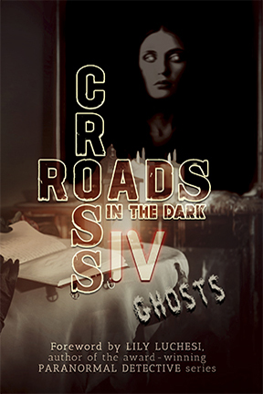 Cover of Crossroads in the Dark IV